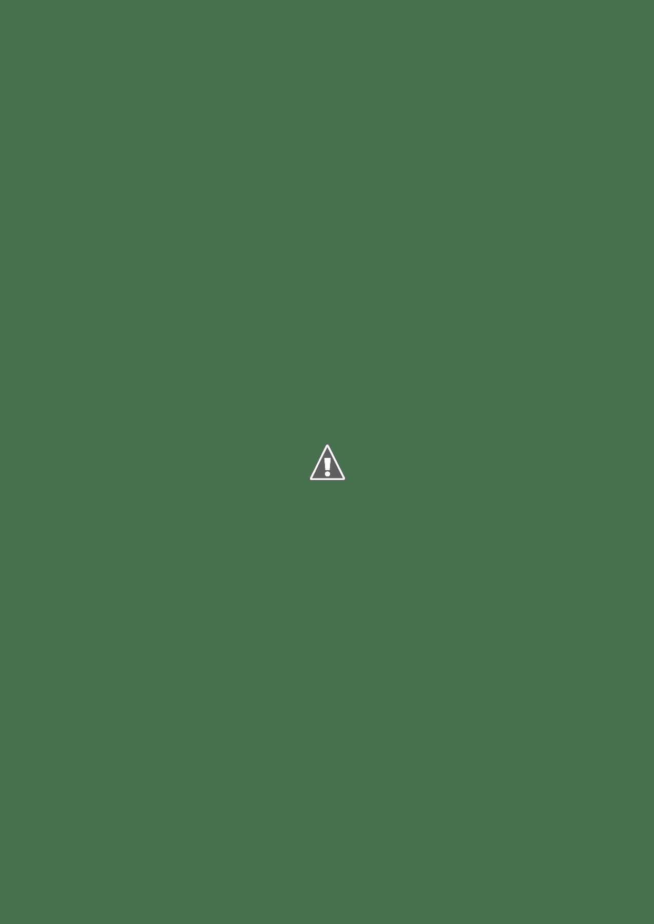 バリアスサン12_1