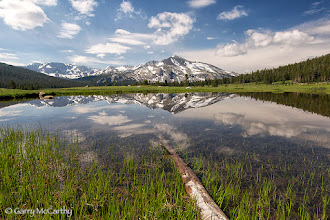 Photo: Kuna Crest, reflected in a meadow tarn, Yosemite, CA  #ThirstyThursdayPics curated by +Giuseppe Basile