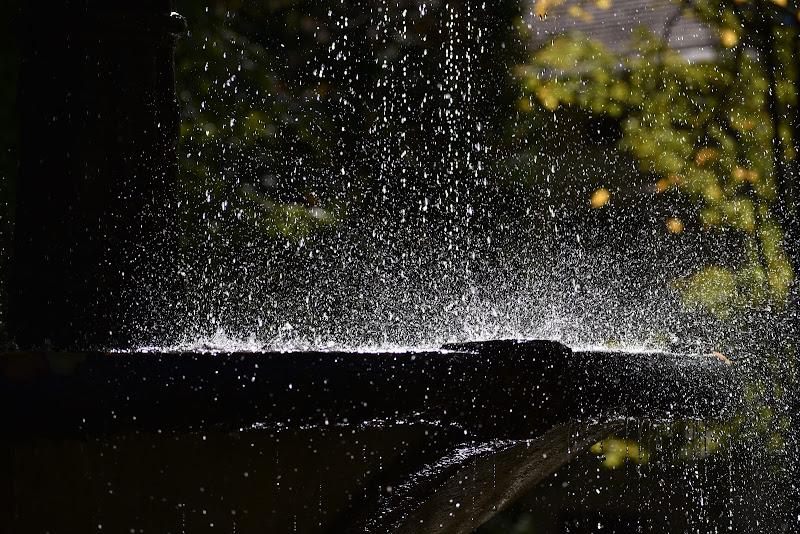 La fontana del parco di paolomole