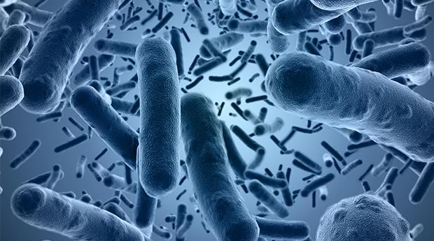 Những điều ít biết về hàm lượng chủng vi khuẩn trong men vi sinh