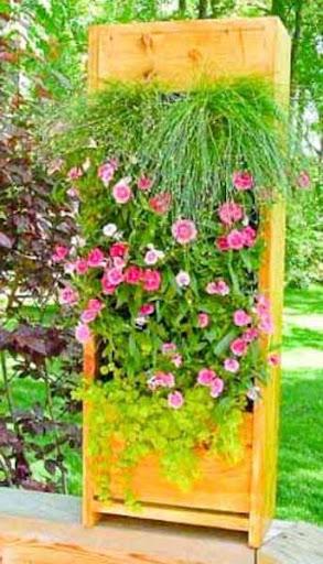 垂直花园的设计
