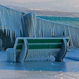 The cold bench by Wilson Beckett - Artistic Objects Furniture (  )
