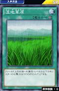 湿地草原デッキ