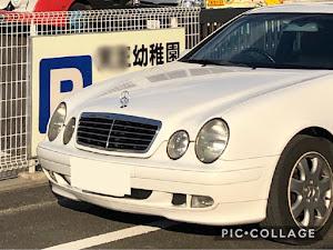 CLK W208 のカスタム事例画像 猫田慎之介さんの2019年02月17日20:02の投稿