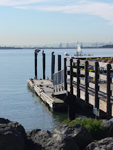 Photo: I threw this in for atmosphere; this is south marina looking at Emeryville, birds more birds and biplate on outer piling