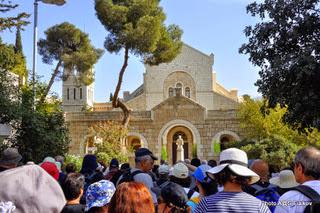 Протестантская Голгофа. Экскурсия Иерусалим для протестантов. Гид в Израиле Светлана Фиалкова.