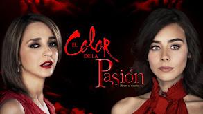 El color de la pasión thumbnail