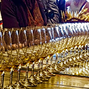Wine Glasses by Riddhima Chandra - Uncategorized All Uncategorized ( glasses, wineglasses, winetasting, wine, drink,  )