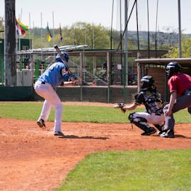 We like baseball by Vladimir Gergel - Sports & Fitness Baseball