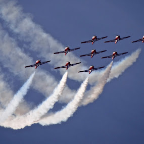 Snowbirds by Campbell McCubbin - Transportation Airplanes ( flying, snowbirds, nine, aerobatics, smoke, formation,  )