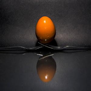 EggColor002.jpg