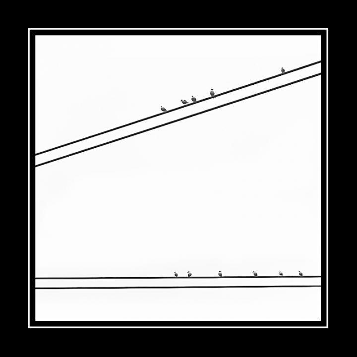 Cinquina vs. SuperEnalotto di Alessandro Remorini
