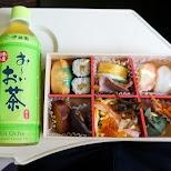 bento box in the train in Hakone, Kanagawa, Japan