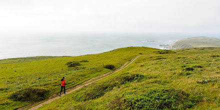 Photo: Halfway to Tomales Point