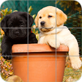 Puppies Puzzle: Retriever