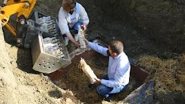 Desenterramiento de Resurrección.