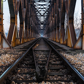 Journey Into The Unknown  by Nenad Borojevic Foto - Transportation Railway Tracks (  )