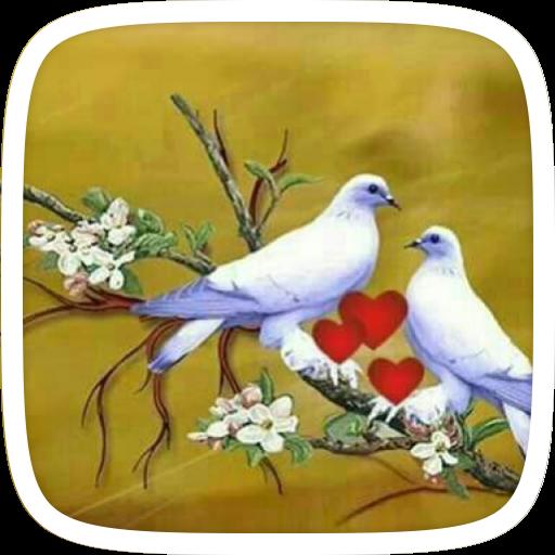 Cute Birds Theme