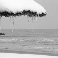 Un' estate al mare. di