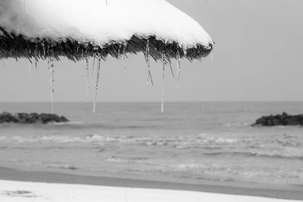 Un' estate al mare. di Maurizio Marcaccio