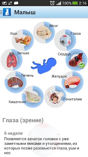 玩免費遊戲APP|下載Я беременна (free) app不用錢|硬是要APP