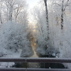 Winter by D.j. Nichols - Instagram & Mobile Android ( winter )