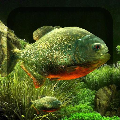3D食人鱼水族馆动态壁纸 個人化 LOGO-玩APPs