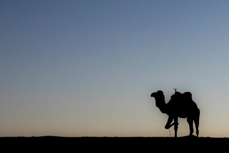 soul of Sahara di jonathan_palagi