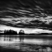 Photo: This is my 3rd image from the trip to Vancouver Island. It is a place called Chesterman Beach in Tofino on Vancouver Island.  My entry for #MonochromeMonday, kindly curated by +Siddharth Pandit   Check out the larger version my my website: http://www.createwithlightphotography.com/Landscapes/Waterscapes/13908691_bzzJkH#1558430328_PCHX3Dx-A-LB  Have a great week all.  #PhotoPlusExtract #GrantMurray #CreateWithLightPhotography #POTD