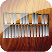 Professional Xylophone