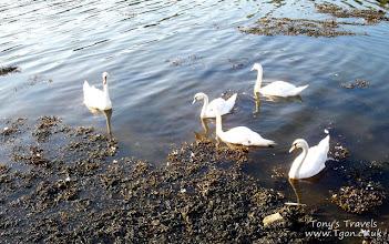 Photo: Bantry Bay