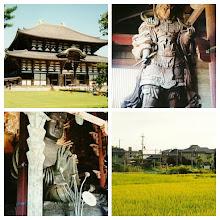 Photo: Nara