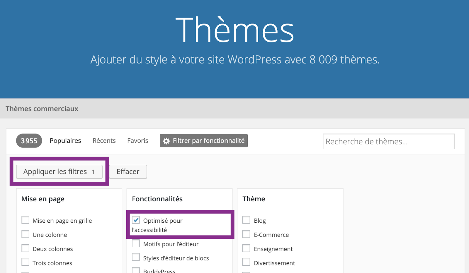 Capture d'écran des filtres à activer sur la page des thèmes sur wordpress.org