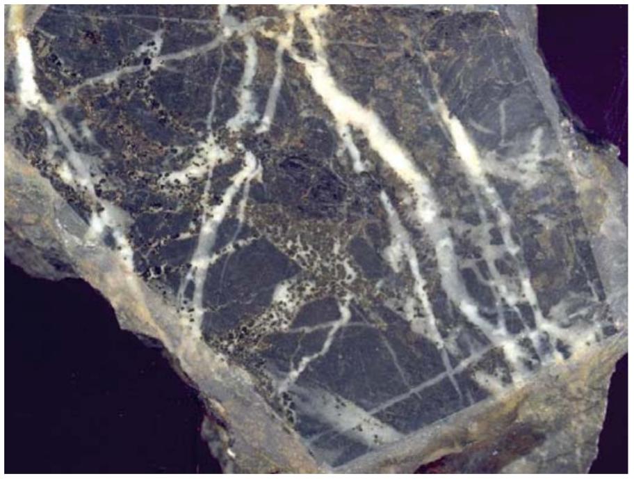 Albite carbonate metasomatite