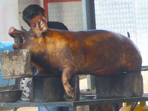 Photo: Whole roast pig, one of several offered for lunch at the roadside