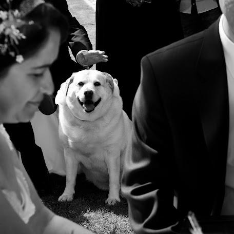 Wedding photographer António Jacinto (antoniojacinto). Photo of 09.04.2015