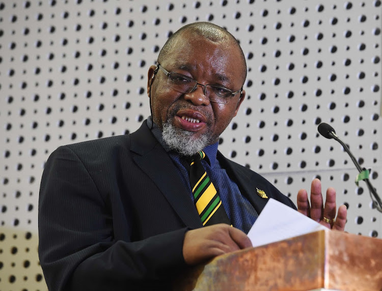 Gwede Mantashe. Picture: GCIS