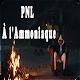 PNL - A l'Ammoniaque without internet (app)