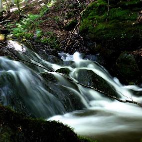 by Vanja Keser - Nature Up Close Water