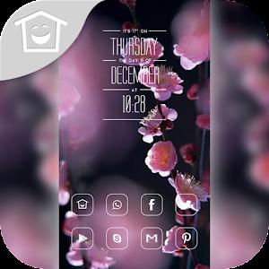 Beautiful plum theme