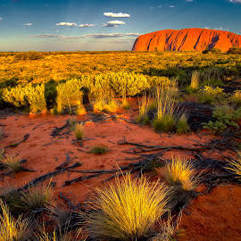Uluru by Stanley P. - Landscapes Mountains & Hills