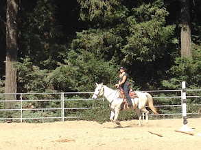 Photo: They let me go faster in the arena when we got back to the arena.