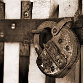 Locked by David Clare - Artistic Objects Antiques ( old, metal, black and white, lock, cpr lock, gate,  )
