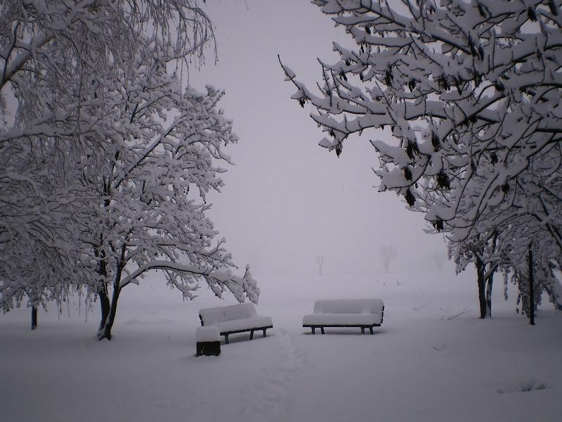 Soffice come la neve! di Ghiz
