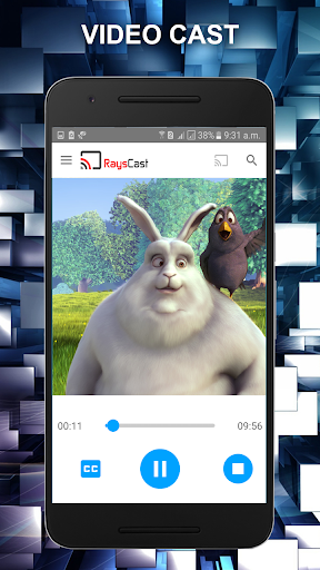RaysCast For Chromecast 1.9.11 screenshots 2