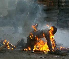 Image result for privert haiti   photos