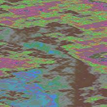 Photo: Fractal Monet (Sort Of)