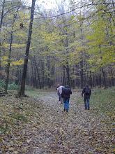 Photo: Prvé kroky smerom do lesa.