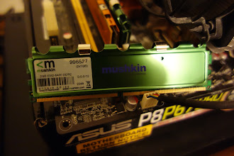Photo: DDR2 800 (PC2 6400) Timing 5-5-5-12 Cas Latency 5 $10