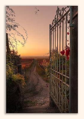 La porta per il paradiso di aliscaforotto